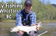 Fly Fishing In Whistler, B.C.