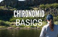How To Fish Chironomids