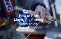 How to Fish: Mayfly Fly Fishing Strategies | GoFishBC