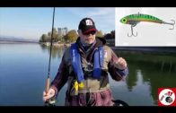 Steelshad Fishing Lures product review