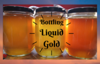 Bottling Honey with C.R. Apiary