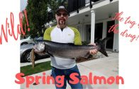 Chinook/Spring Salmon Fishing in Pacific Ocean Aug 26, 2019