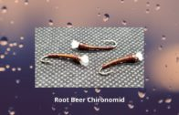 Root Beer Chironomid – How To Tie Flies || Vise Squad S2E3