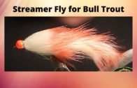 Chartreuse Salamander Popper Fly – Fly Tying