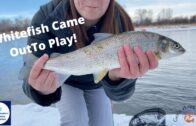 Fishing The Bow River In The Winter || Women's Fishing Network S1E5