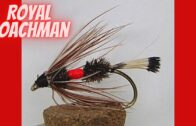Royal Coachman – How To Tie Flies || Vise Squad S2E71