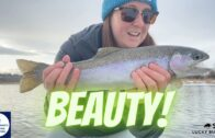 Fishing For Rainbow Trout On The Bow River || Women's Fishing Network S1E7