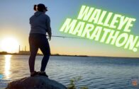 Walleye Marathon!