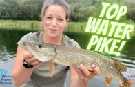 Top Water Fishing For Pike!