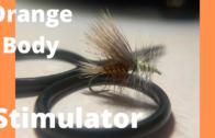 Orange Body Stimulator